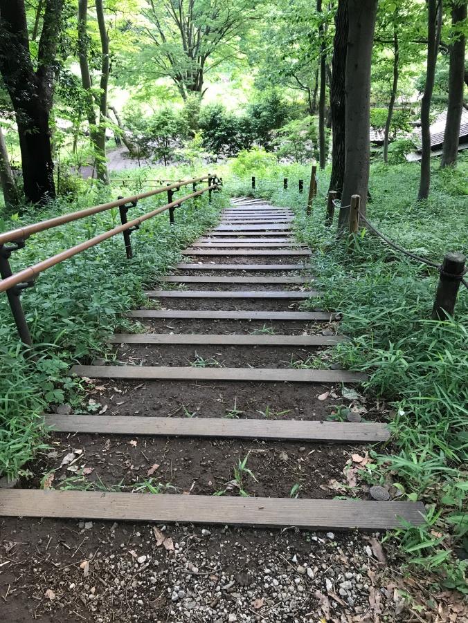 garden stairs IMG_0983