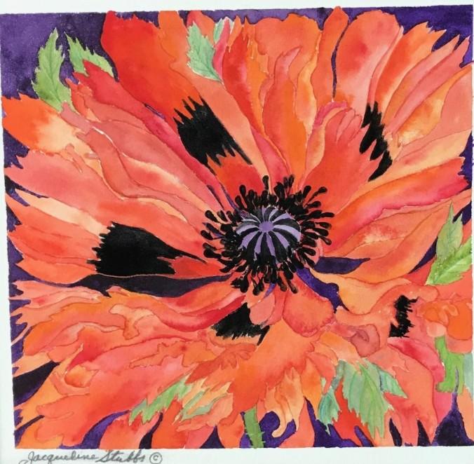 IMG_8470 (1) flower poppy