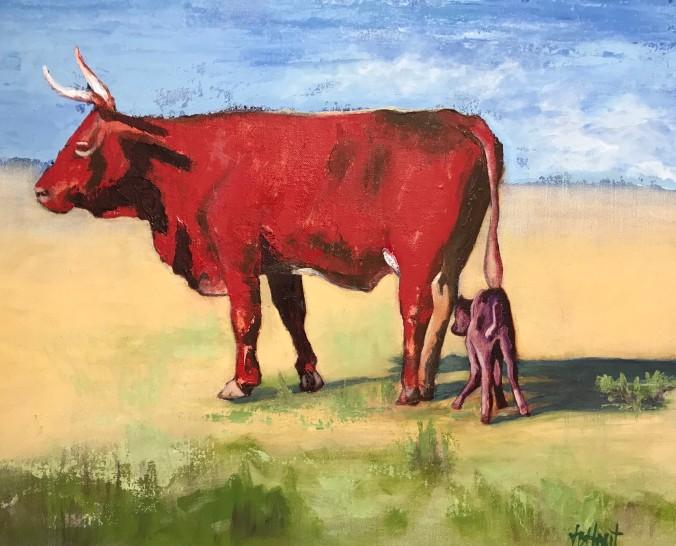 img_3657 (2) vernita's bull